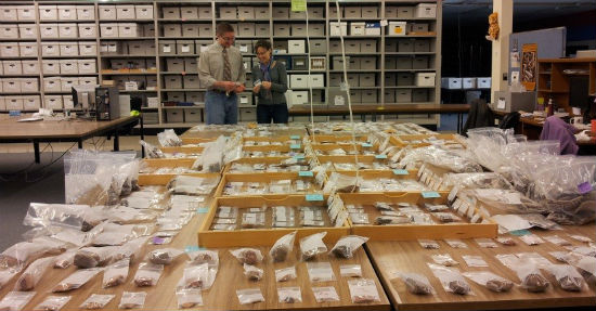 Curation pieces being cataloged